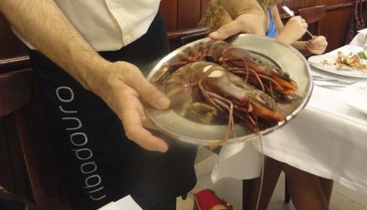 Camarão Tigre - Restaurante Ribadouro