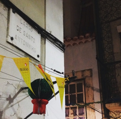 Manjericos - Festa Santo Antonio Lisboa